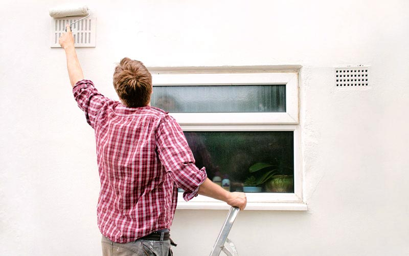 Best Exterior Paint to Prevent Mold – How to Kill Mold